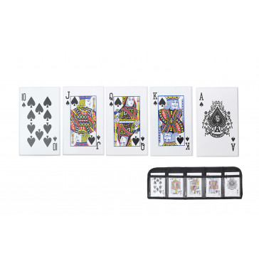 5 Piece Throwing Cards
